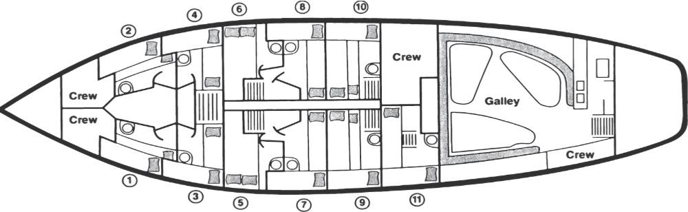 J&E Riggin Cabin Layout