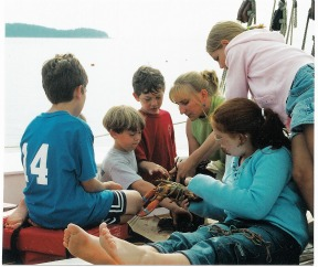 Learning about a Maine Lobster