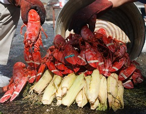 Maine Lobster Bake - Photo by Jim Karg