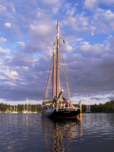 Maine Windjammer at anchor - By David Delperdang