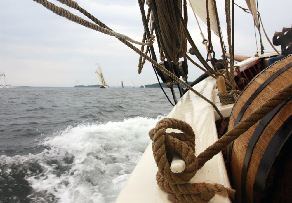 maine windjammer fleet race week